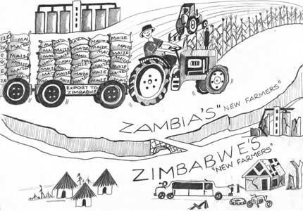 Displaced farmers feeding Zimbabwe from Zambia