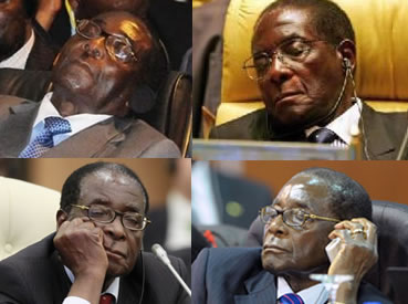 Welshman Ncube has claimed Robert Mugabe sleeps during SADC meetings (Above: Mugabe attending various international conferences)