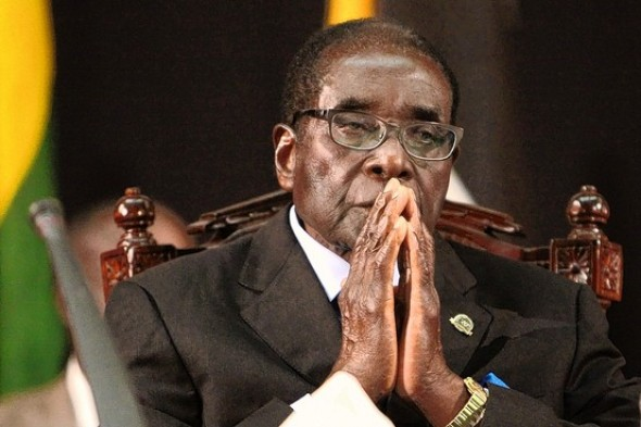 CIO sponsored NGO suing Mugabe