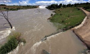 Floods, lightning claim 124 lives