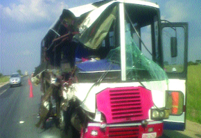 12 people killed in Shangani accident