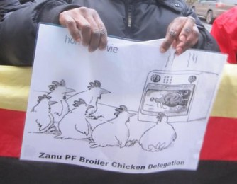 Mugabe's delegation turns 'broiler' chicken in the UK