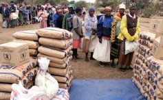 Food aid distribution in Zimbabwe (file picture)