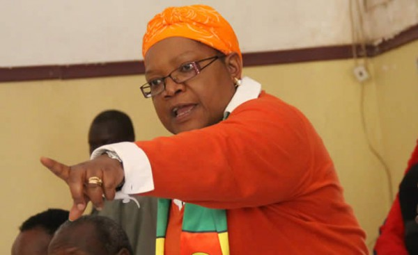 Mujuru pleads with Diaspora