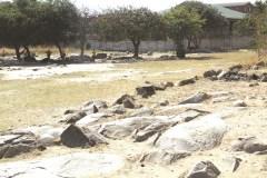 Zanu PF youths seize Johane Masowe shrine
