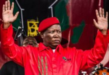 Julius Malema compared to Adolf Hitler