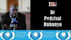 Dr Pedzisai Ruhanya is the director of the Zimbabwe Democracy Institute (ZDI)