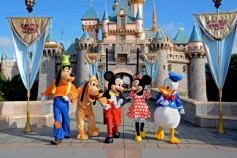 $460m Disneyland Vic Falls investor found