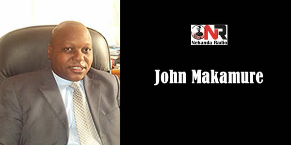 News page 1233 of 2597 nehanda radio john makamure is the executive director of the southern african parliamentary support trust negle Gallery