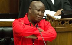 Opposition leader Julius Malema