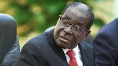 Mugabe admits land reform blunder