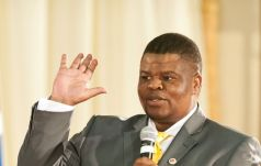 South Africa's State Security Minister David Mahlobo