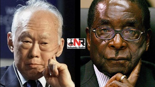 Lee Kuan Yew vs Robert Mugabe