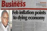 """George Chisoko's offence was to clear a report headlined """"February inflation points to a dying economy"""" which was published by the Herald Business on March 16."""