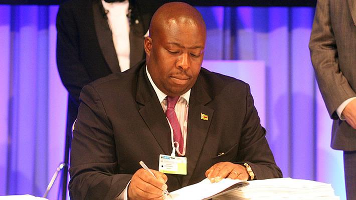 Zanu PF national commissar and environment minister Saviour Kasukuwere