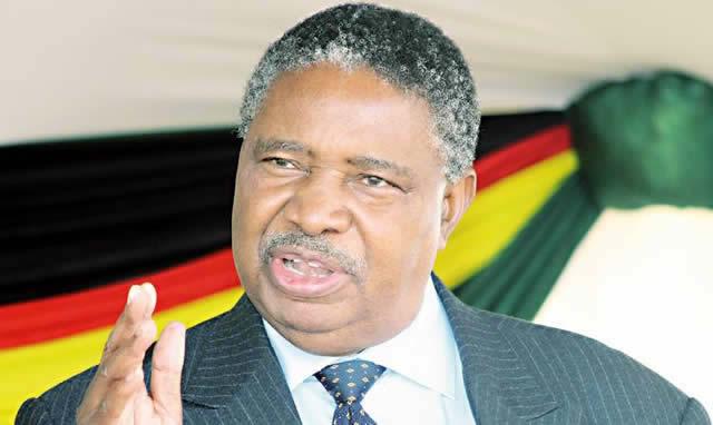 Vice President Phelekezela Mphoko