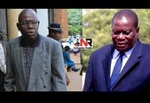Brothers: Joel and Solomon Mujuru