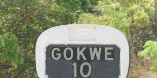 The incident has left Gokwe villagers tongue