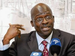 SA Minister of Home Affairs - Malusi Gigaba