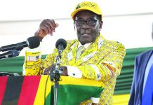 President Robert Mugabe addressing Zanu PF congress in December 2014