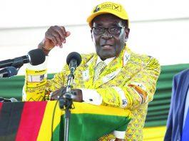 President Robert Mugabe addressing Zanu PF congress last year