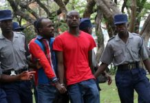 MIssing journalist and activist Itai Dzamara being arrested by police for demonstrating against President Robert Mugabe