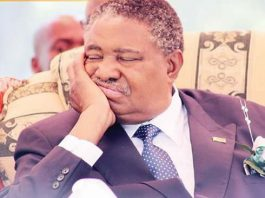 Sleeping on the Job: Vice President Phelekezela Mphoko