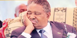 Sleeping on the Job: Vice President Phelekezela Mphoko