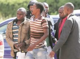 Some of the four suspects who were arrested last Friday following an abortive bid to bomb the First Family's Alpha Omega Dairy Farm being led by detectives into the Harare Magistrates' Courts yesterday. — (Picture by Lee Maidza)