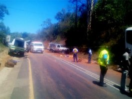 Four Zimbabweans killed, 29 injured in SA bus accident