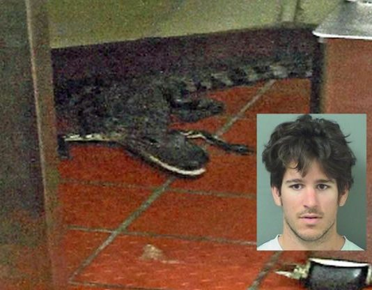 Man throws live alligator into drive-through restaurant
