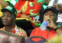 Jonathan Moyo and Saviour Kasukuwere