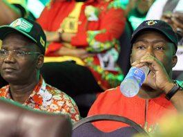 Jonathan Moyo and Saviour Kasukuwere