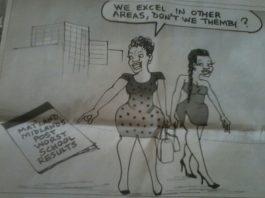 Chronicle suspends cartoonist over 'sexist' cartoon with 'tribal undertones'