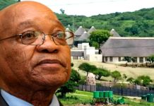 South Africa court to hear DA case against Zuma