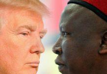 The Rise of Julius Trump