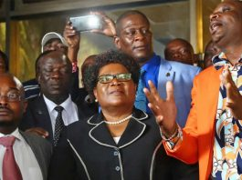 Zimbabwe People First president Joice Mujuru