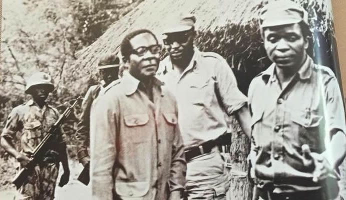 Why Its Not Easy For Mugabe To Get Rid Of Mnangagwa