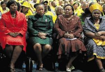 Millions from police budget used to buy Zuma's wives 10 vehicles