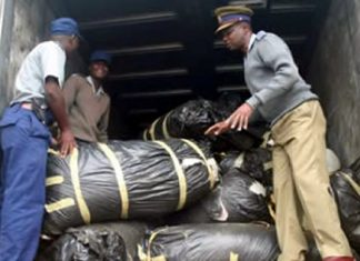 File Picture: Southerton Police Station details display part of the 41 bags of mbanje found on a truck in Harare in January 2012
