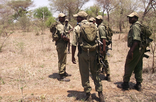 Zimbabwe National Park Rangers