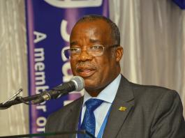 Secretary for Mines and Mining Development Professor Francis Gudyanga