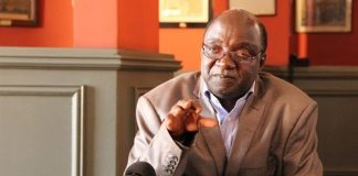 Zimbabwe National Liberation War Veterans Association (ZNLWVA) spokesperson, Douglas Mahiya