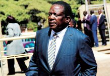 Vice President Emmerson Mnangagwa (Picture by NewsDay)