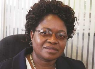 The auditor general, Mildred Chiri, raised concern over the huge amounts of funds being salted out of the tax system by State CEOs.