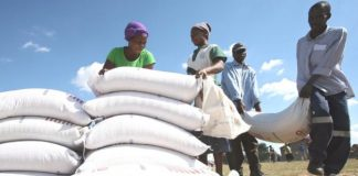 Many Zimbabweans are relying on food aid this year