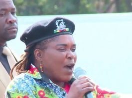 Mandi Chimene, the Manicaland provincial affairs minister