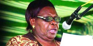 Minister of State for Provincial Affairs for Masvingo Shuvai Mahofa