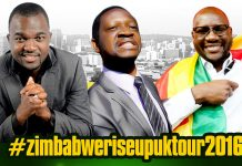 Patson Dzamara, Sten Zworwadza and Evan Mawarire have been advertised as special guest speakers at the Zimbabwe Rise Up UK tour