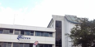Doves Holdings to increase market share